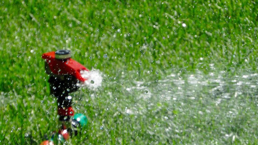wasser sparen im garten tipps sommer, im garten und auf dem balkon: beim bewässern wasser sparen – bund e.v., Design ideen