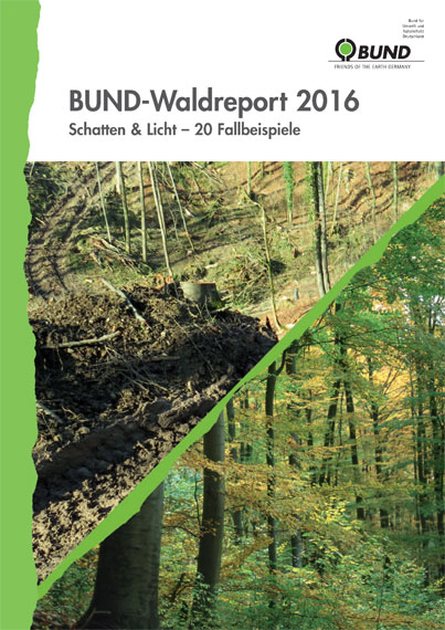BUND-Waldreport 2016. Foto: BUND